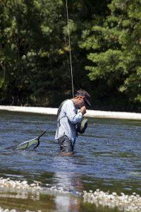 Matthieu Gentilhomme, guide de pêche, argentât sur Dordogne